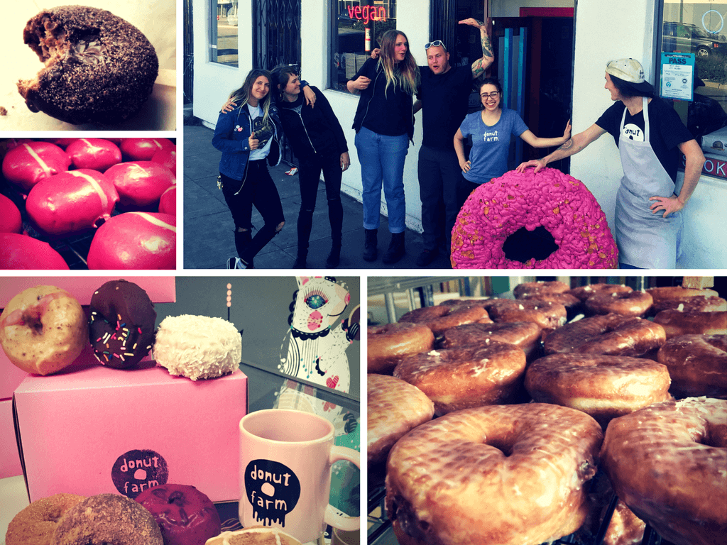 doughnut-farm-collage