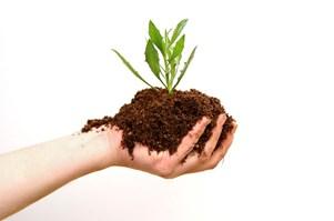 hand-soil